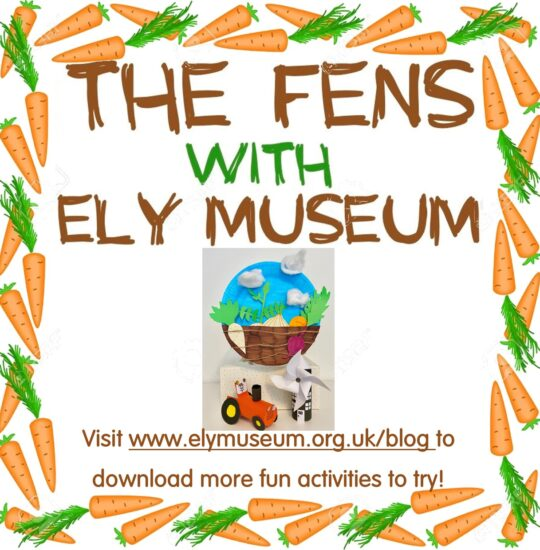 #MuseumFromHome: The Fens