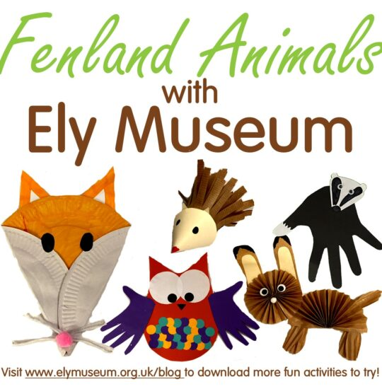 #MuseumFromHome: Fenland Animals